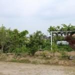 今回は周りは田んぼや緑が溢れ、住宅が密集していない場所に建てます。